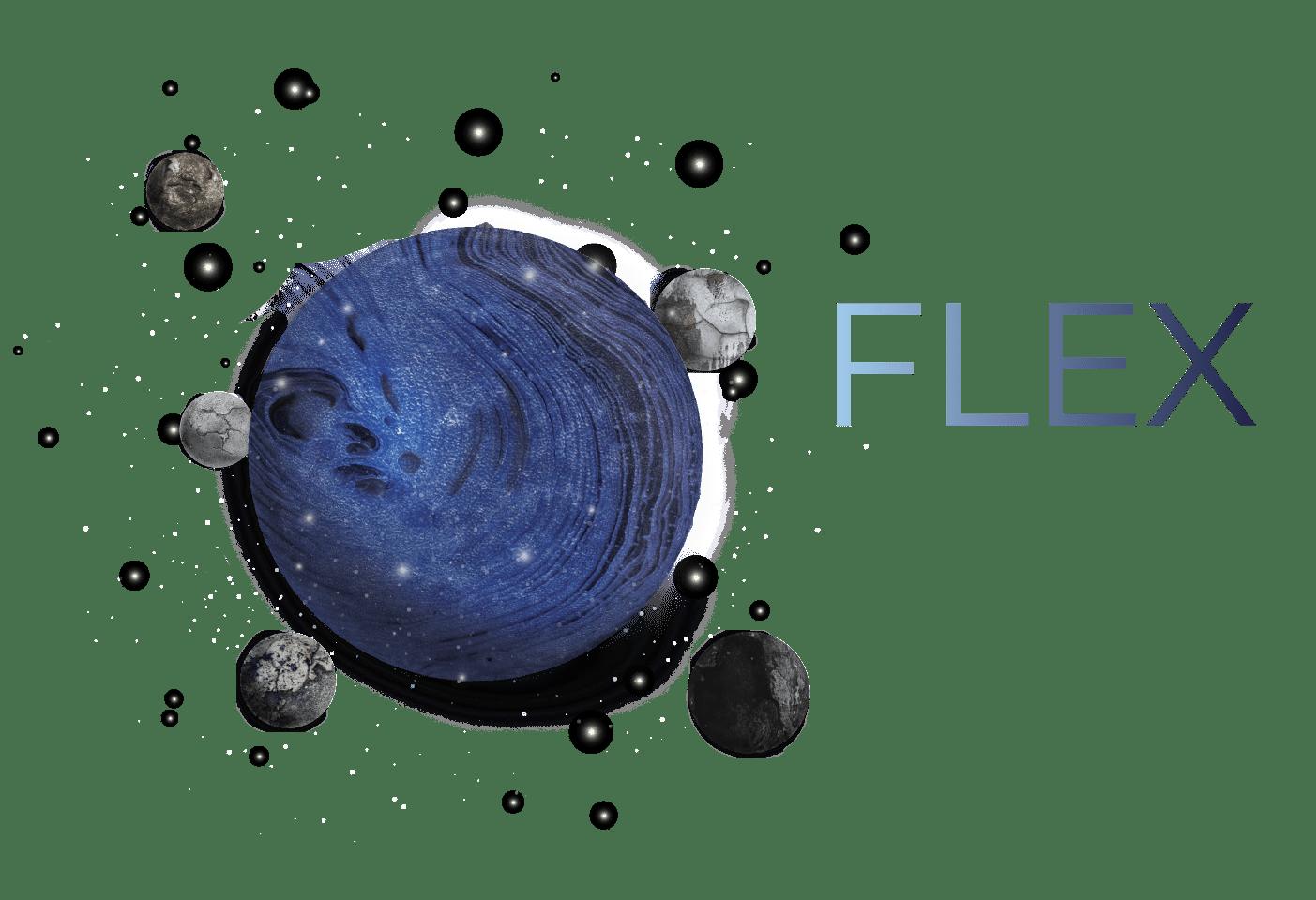FLEX_MOONS-21